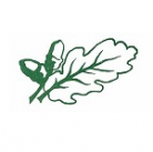 The Mortimer Federation of St.John's and St. Mary's logo